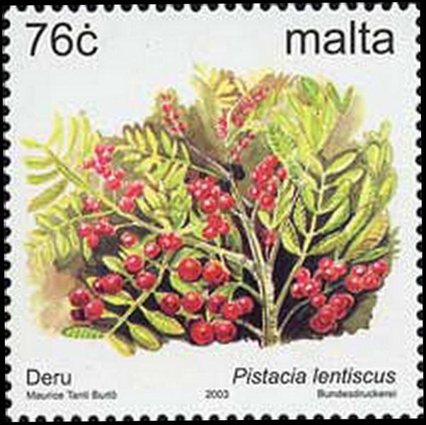 雙子葉植物—漆樹科(Anacardiaceae)到大廳A廳展館B廳展館C廳展館D廳展館會員專區關於我們